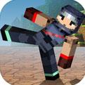 方块斗士 Block Fighter安卓版、方块斗士 Block Fighterios版