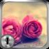 玫瑰纹字锁屏